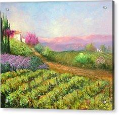 Vineyard Spring Acrylic Print by Sally Seago