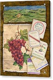 Vineyard View I Acrylic Print by Paul Brent
