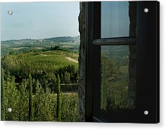 Vineyards Of Chianti Viewed Acrylic Print by Todd Gipstein