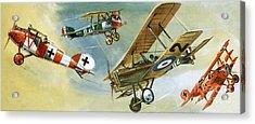 Vintage Aircraft Acrylic Print by Wilf Hardy