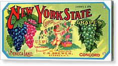 Vintage Concord Grape Packing Crate Label C. 1920 Acrylic Print