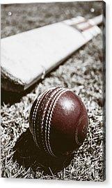 Vintage Cricket Acrylic Print by Jorgo Photography - Wall Art Gallery