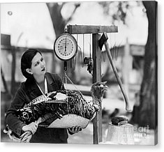 Vintage Holiday Card   Woman Weighing A Turkey Ahead Of The Holidays Acrylic Print by American School