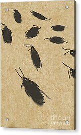 Vintage Infestation Acrylic Print by Jorgo Photography - Wall Art Gallery