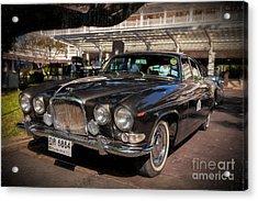 Vintage Jaguar Acrylic Print by Adrian Evans