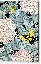 Vintage Japanese Illustration Of A Hydrangea Blossoms And Butterflies Acrylic Print by Japanese School