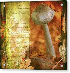 Vintage Nature Journal Page  Acrylic Print by Bellesouth Studio