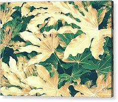 Vintage Season Gold Acrylic Print by Rebecca Harman