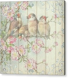 Vintage Shabby Chic Floral Faded Birds Design Acrylic Print