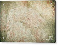Vintage Silk Cotton Roses Texture Acrylic Print