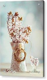 Vintage Spring Blossom Acrylic Print by Amanda Elwell