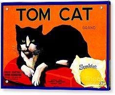 Vintage Sunkist Tom Cat Acrylic Print