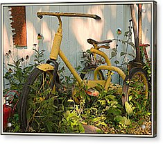Vintage Tricycle Acrylic Print
