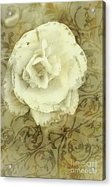 Vintage White Flower Art Acrylic Print by Jorgo Photography - Wall Art Gallery