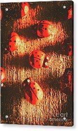 Vintage Wooden Ladybugs Acrylic Print