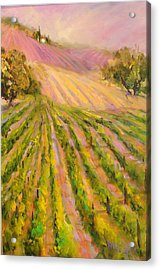 Vintners Delight Acrylic Print by Sally Seago