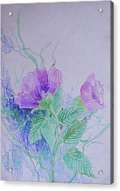 Violet Flowers Acrylic Print by Sharmila L