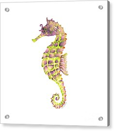 Violet Green Seahorse - Square Acrylic Print by Amy Kirkpatrick