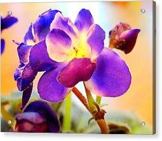Violet In Bloom Acrylic Print