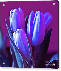 Violet Poetry Of Spring Acrylic Print