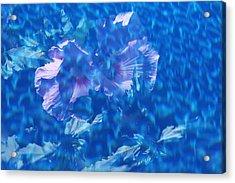 Violet Satin Reflections Acrylic Print