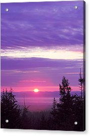 Violet Sunset IIi Acrylic Print
