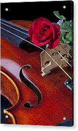 Violin And Red Rose Acrylic Print by M K  Miller