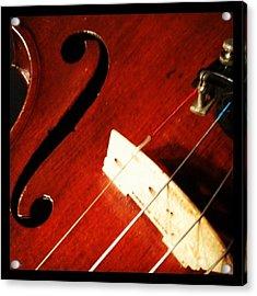 Violin Bridge Acrylic Print