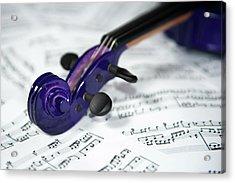 Violin Tuning Pegs  Acrylic Print