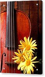 Violin With Daises  Acrylic Print