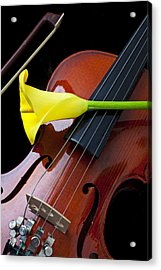 Violin With Yellow Calla Lily Acrylic Print by Garry Gay