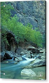 Virgin River In Zion 2 Acrylic Print by Stan and Anne Foster