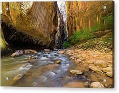 Virgin River - Zion National Park Acrylic Print