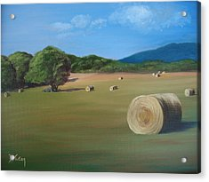 Acrylic Print featuring the painting Virginia Hay Bales by Donna Tuten