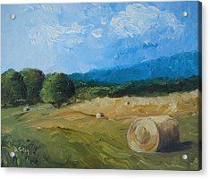 Virginia Hay Bales II Acrylic Print by Donna Tuten