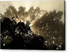 Virginia Sunrise Acrylic Print