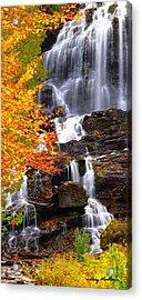 Vivid Falls Acrylic Print