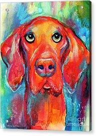 Vizsla Dog Portrait Acrylic Print by Svetlana Novikova