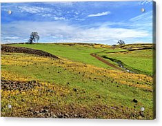 Acrylic Print featuring the photograph Volcanic Spring by James Eddy