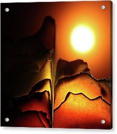 Volcanoes Acrylic Print