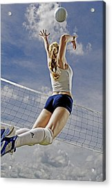 Volleyball Acrylic Print by Steve Williams