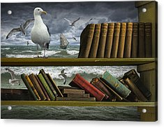 Voyage Into The World Of Books Acrylic Print