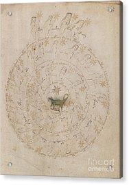 Voynich Manuscript Astro Scorpio Acrylic Print