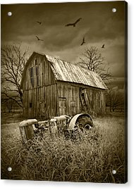 Vultures Circling The Old Barn Acrylic Print by Randall Nyhof