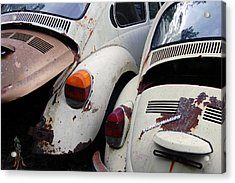Vw Sisters Acrylic Print by Jame Hayes