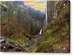 Wahclella Falls In Columbia River Gorge Acrylic Print by David Gn