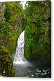 Wahclella Falls Acrylic Print by PJ  Cloud