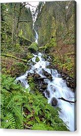 Wahkeena Falls Oregon Waterfall Acrylic Print by Dustin K Ryan