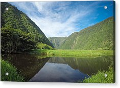 Waimanu Valley Acrylic Print by Brian Governale