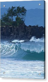 Acrylic Print featuring the photograph Waimea Shorebreak by Stan and Anne Foster